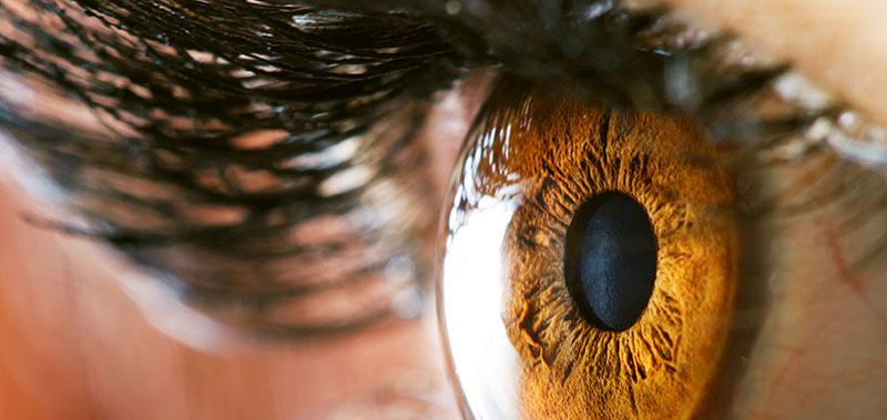 عکاسی ماکرو از چشم انسان و بحث فوکس در لنز